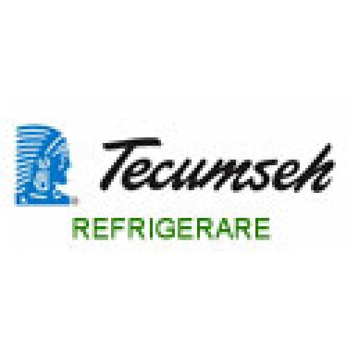 Compresoare refrigerare R404A